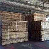 Hardwood  Unedged Timber - Flitches - Boules For Sale - ASH LUMBER 50MM