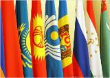 Other Services - Support of transactions on lumber and wood in Central Asia and China