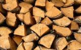 Leños- Bolitas – Astillas – Polvo - Bordes En Venta - Leña/Leños Troceados Abedul  Rusia