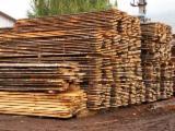 Tvrdo Drvo - Registrirajte Vidjeti Najbolje Drvne Proizvode - Rekonstituisani Bulovi, Turski Hrast