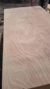 China 18mm okoume plywood poplar core e1 e2 glue bb/cc grade for furniture