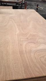 Plywood Supplies - China 18mm sapele/sapelli plywood for furniture