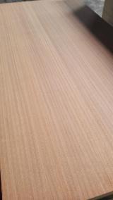 Sapelli Veneered Plywood, 2.5-25 mm