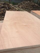 Teak Packaging Plywood Sanding 2 Sides