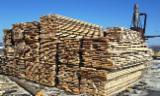 Unedged Hardwood Timber - Beech  Boules Romania
