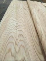 木皮供应网络 - 批发硬木木皮和热带木木皮 - 红橡木, 旋切