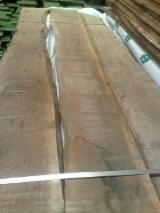 Unedged American Black Walnut, AB grade