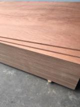 Veneer and Panels - Bintangor Natural Plywood for Packaging, 5-18 mm