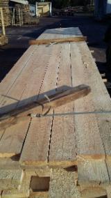 Find best timber supplies on Fordaq - 14-30 mm Shipping Dry (KD 18-20%) Pine  - Redwood Planks (boards)  from Belarus