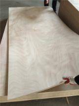 2.7mm 3mm Okoume Plywood with Red Hardwood core