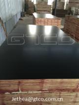 Veneer and Panels - WBP marine plywood/construction shuttering plywood/ Black film faced phenolic plywood