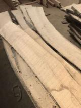 Hardwood  Unedged Timber - Flitches - Boules - White Ash Boules Romania