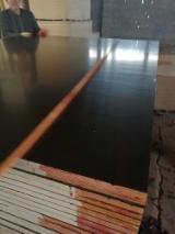 Poplar Film Faced Plywood, 18 x 1220 x 2440 mm