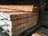 Nadelschnittholz, Besäumtes Holz Aleppo Kiefer - Dachlatten, frisch