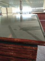 Film Faced Plywood for Concrete Formwork 18mm
