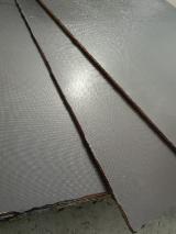 Poplar Plywood - Full Poplar Film Faced Plywood 20mm wiremesh