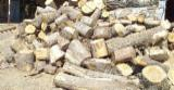 null - Looking to buy 1000 tons of Wood Chips