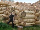 Wood Houses - Precut Timber Framing - Cedar/Larch Wooden Houses