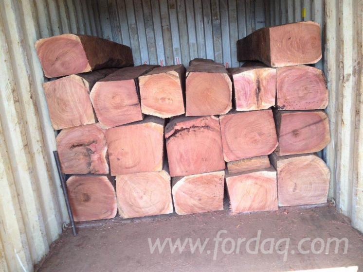 Tali-Saw-Logs-from-Cameroon