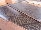 China 18mm brown film faced plywood poplar core wbp glue