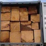 Hardwood Saw Logs For Sale - Hardwood logs