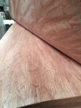 Rotary Cut Veneer For Sale - China rotary cut Bintangor veneer