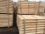 Latvia - Furniture Online market - Pine/ Spruce Machine Rounded Posts/ Stakes/ Poles