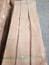 Sawn And Structural Timber Asia - Europe Beech lumber