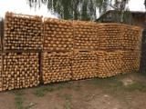 Grumes Résineux Pin - Bois Rouge à vendre - Stakes rondins diamètre de 50-110 mm, longueur de 1650 à 4000