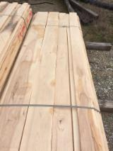 North America Sawn Timber - 4/4 HICKORY KD
