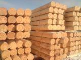 Wood Houses - Precut Timber Framing Pine Pinus Sylvestris - Redwood For Sale - Pine Wooden Houses Round Logs