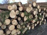 Softwood  Logs - Spruce  - Whitewood 14 cm 1-2 Saw Logs