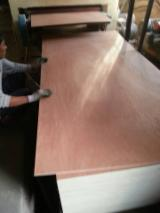 Bintangor Plywood with Cheap Price, 2 - 18 mm