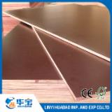 Brown Film Faced Full Eucalyptus Plywood 21mm