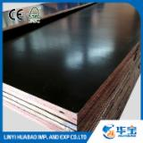 Poplar Plywood - China Film Faced Plywood AAA Grade from Huabao, 18 mm