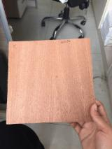 AAA grade Sapelli/ Meranti Plywood