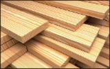 Schnittholz - Besäumtes Holz Zu Verkaufen - Nadelholz, 45 - 10000 m3 pro Monat