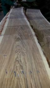 Holzagenturen - Jetzt Registrieren - Handelsvermittlung, Vereinigte Arabische Emirate