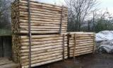 Forest And Logs - 6/8-8/10-10/12 cm Chestnut Poles Italy