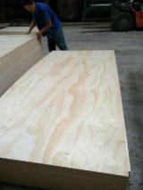 单板及镶板 亚洲 - 天然胶合板, 放射松