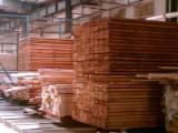 Nadelschnittholz, Besäumtes Holz Sibirische Lärche Zu Verkaufen - Bretter, Dielen, Sibirische Lärche, Thermisch Behandelt - Thermoholz