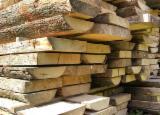 Laubholz  Blockware, Unbesäumtes Holz Zu Verkaufen Italien - Loseware, Buche