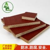 Plywood - Anti-slip Brown Film Faced Plywood without Logo