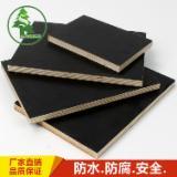 Plywood - Black Film Faced Plywood Eucalyptus Core