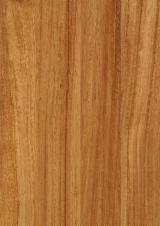 Solid Wood Flooring - African Doussie Small Board 14/15 x 90 x 500/1200 mm