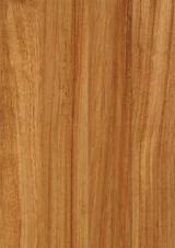 Solid Wood Flooring - Prefinished African Doussie Flooring 10 mm