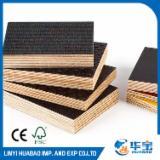 Vend Contreplaqué Filmé (Noir) Eucalyptus 18 mm Chine