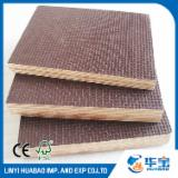 Poplar Antislip /Wiremesh Film Faced Plywoods