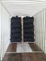 Tronchi Piatti Conici - Vendo Picchi Eucalyptus