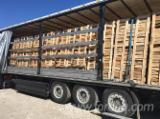 Firewood, Pellets and Residues Supplies - Beech  Firewood/Woodlogs Cleaved